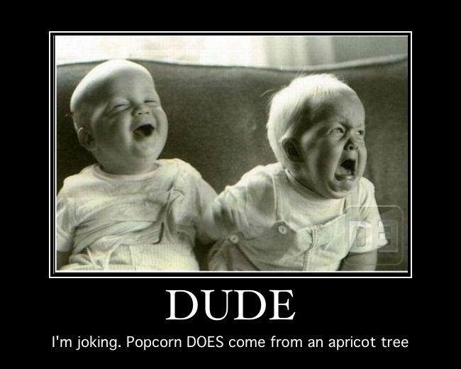 Hilarious Baby Mormon memes (22)