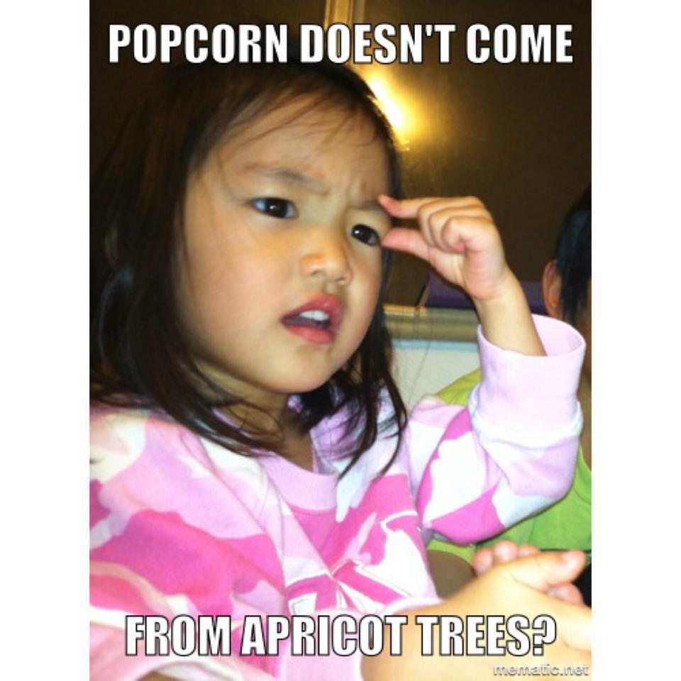 Hilarious Baby Mormon memes (7)