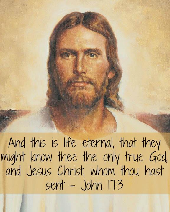 John 173 Jesus Christ